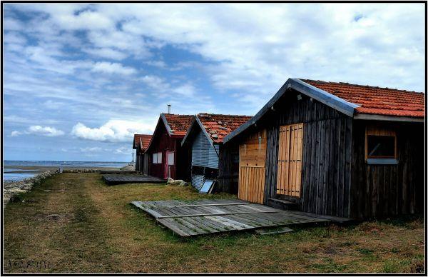 Les cabanes du port
