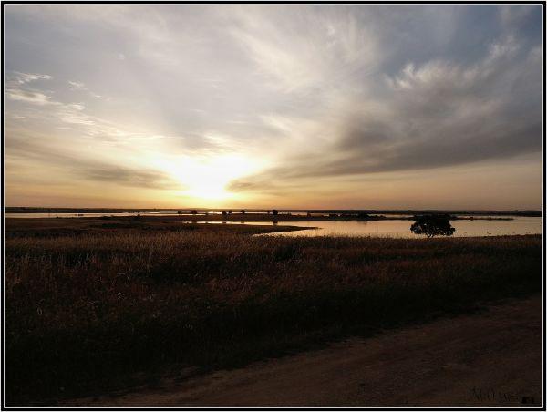 Quand le soleil se lève..... (1)