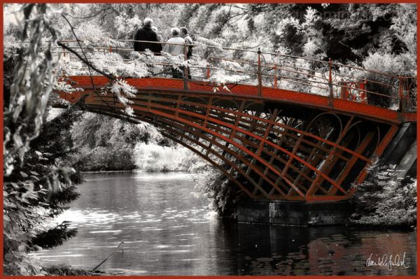 the red bridge 2/2