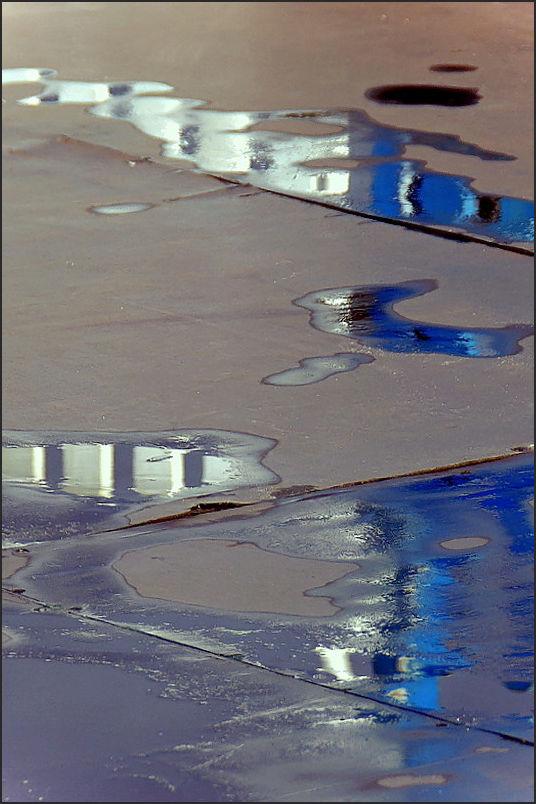 Flaques d'eau dans l'enclos (3)