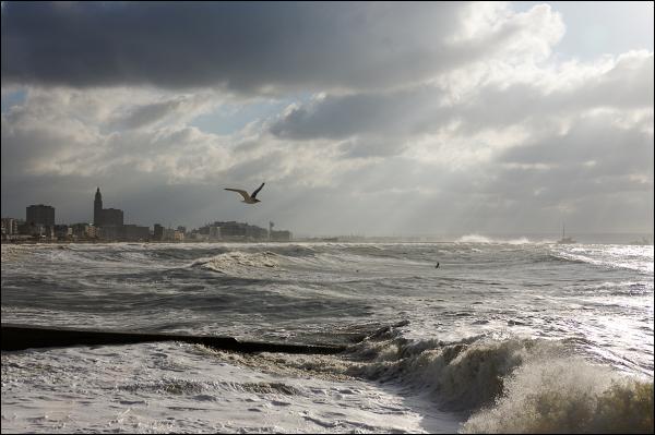Lumière d'hiver sur Le Havre -3