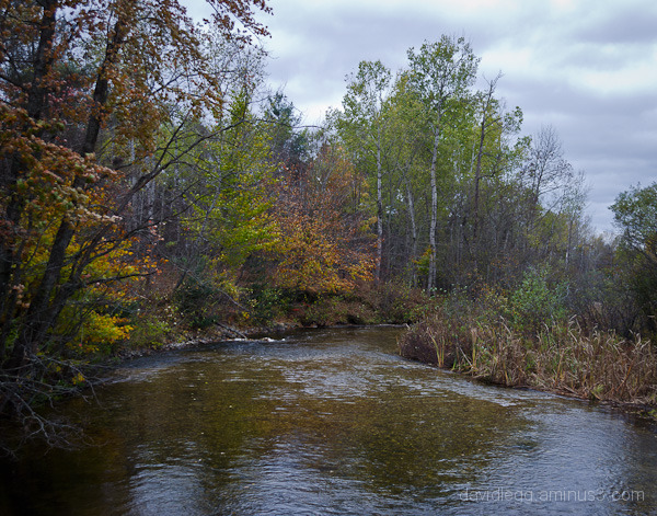Betsie River, Below Grass Lake, October