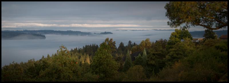 Fog at Dawn, Puget Sound