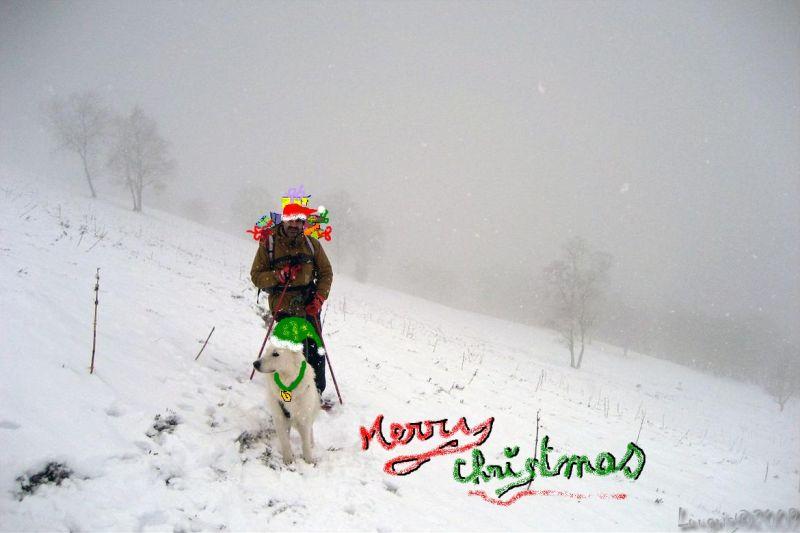 Joyeux Noël...