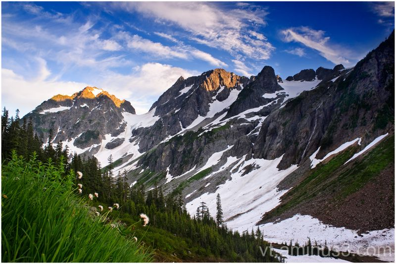 Wildflowers over Pelton Basin, North Cascades, WA