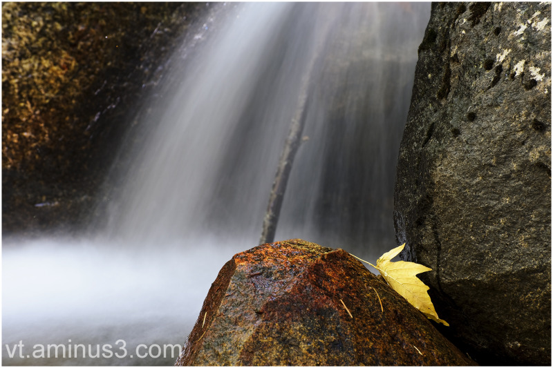 A Fall Abstract, Bridalveil Creek, Yosemite NP, CA