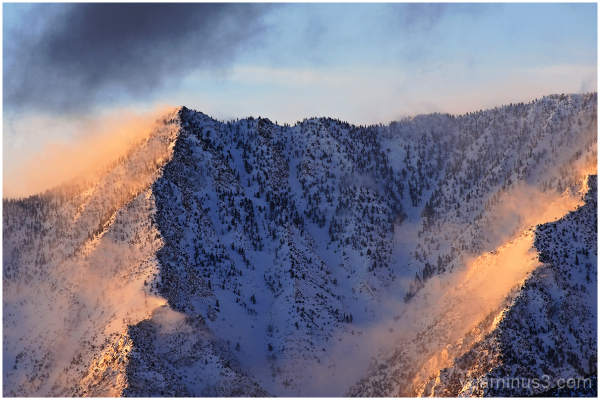 Rising mist after a snowstorm at sunrise, CA, USA