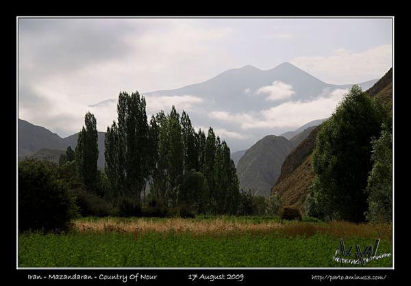 cloud landscape nature grass plant