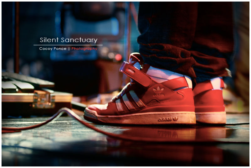 shoes, adidas