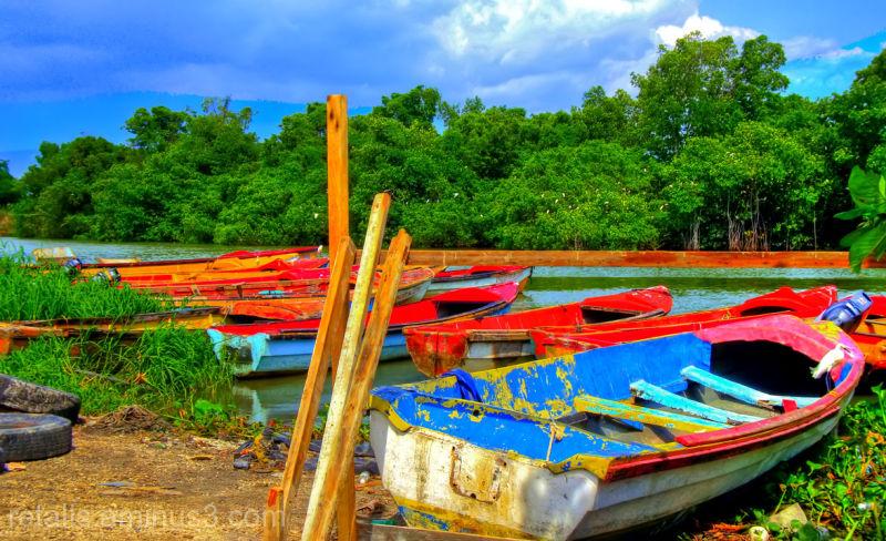 Amb quina barca sortim a la mar?