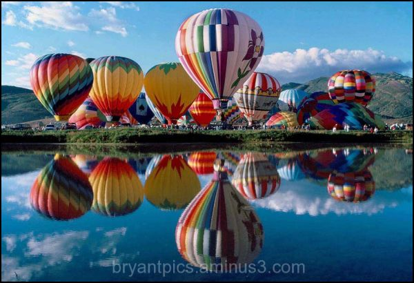 Hot air balloons getting ready for the sky.