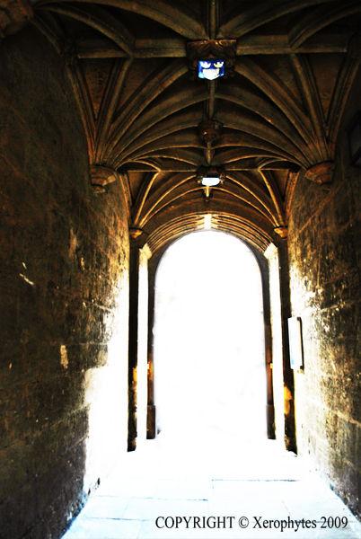 Oxford Arch