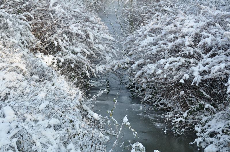 Snow landscape 6/8
