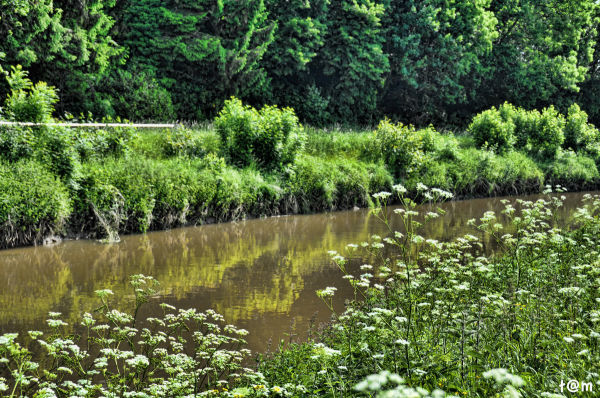 The Demer River - Aarschot 1/2