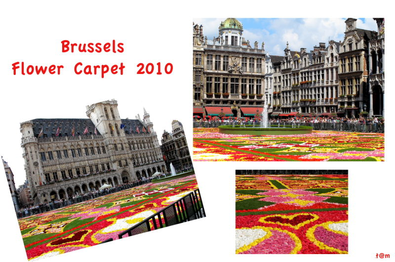 Brussels Flower Carpet 2010 (1/2)