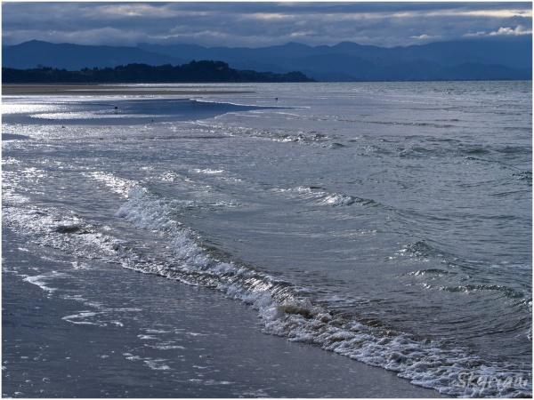 Rabbit Island Beach