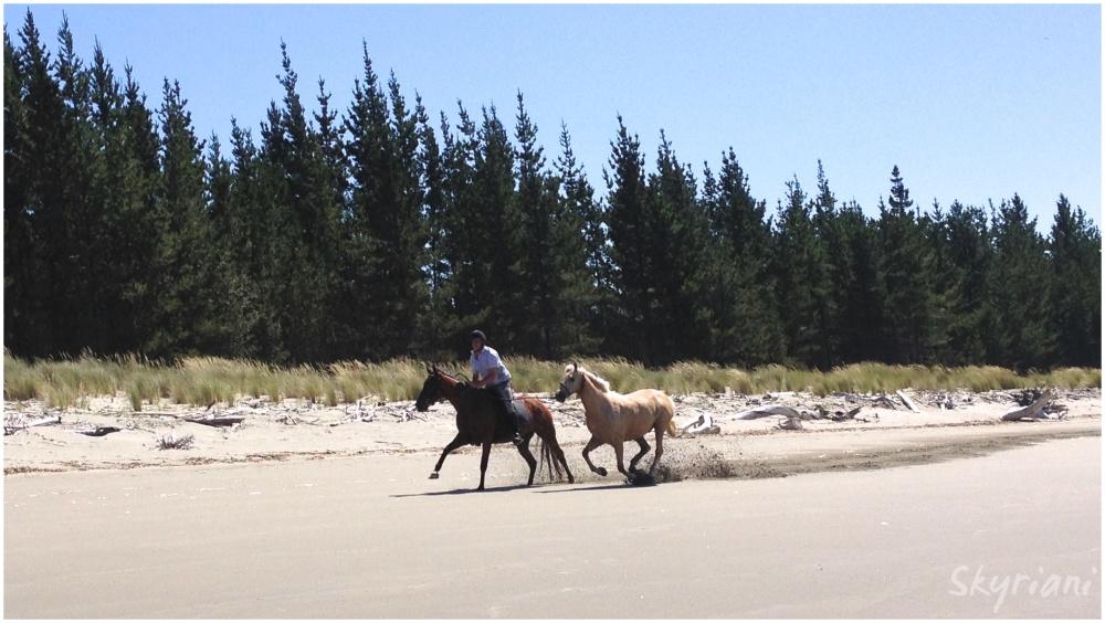 Beach Jockey I