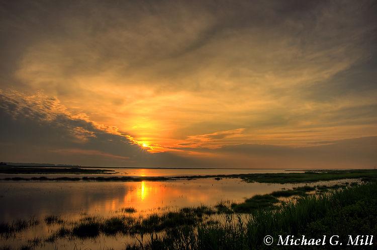 Salt Marsh Sunrise (Bombay Hook)