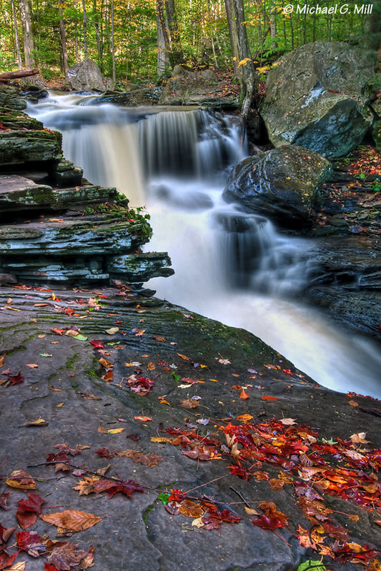 Early Signs Of Autumn At Ricketts Glen