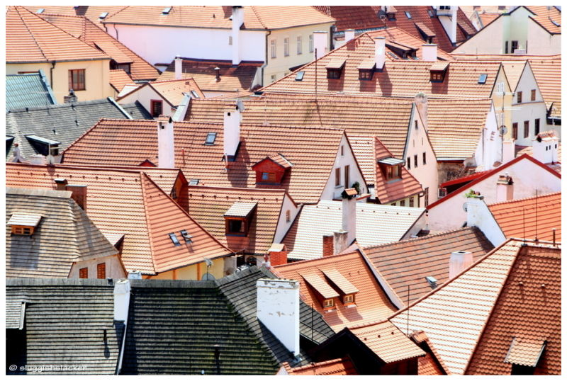 Roofs, chimneys and attics.