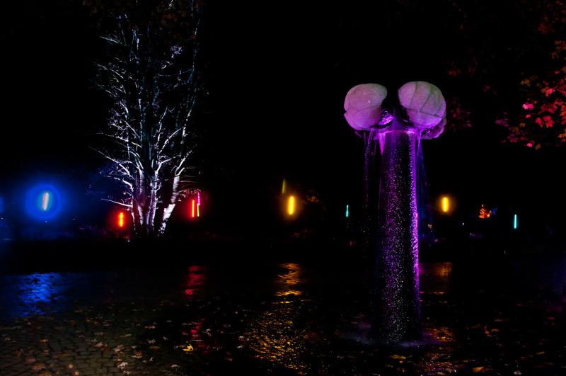 Licht im Park 1