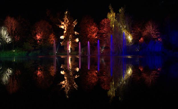 Licht im Park 6
