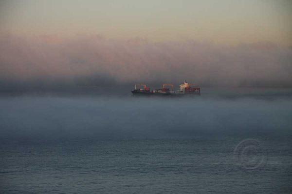 Headed For the Fog