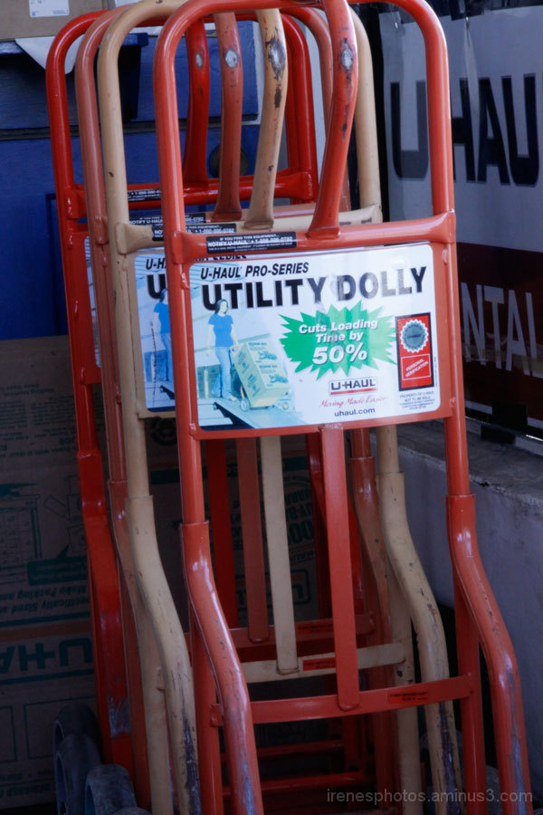 Utility Dolly