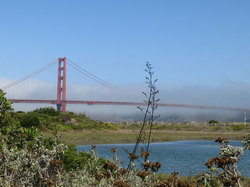 From Crissy Field #2