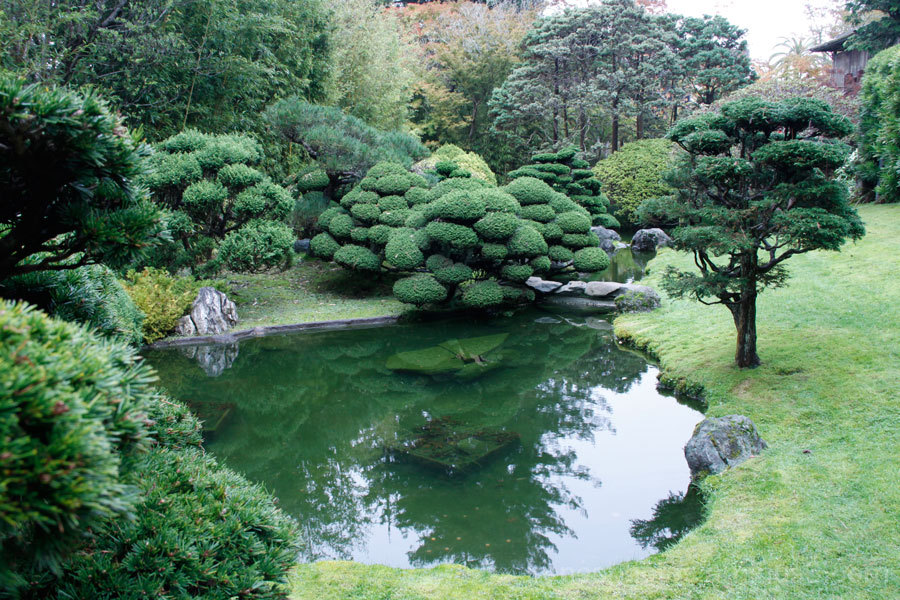 Japanese Tea Garden #4