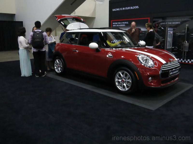 57th Annual International Auto Show #4