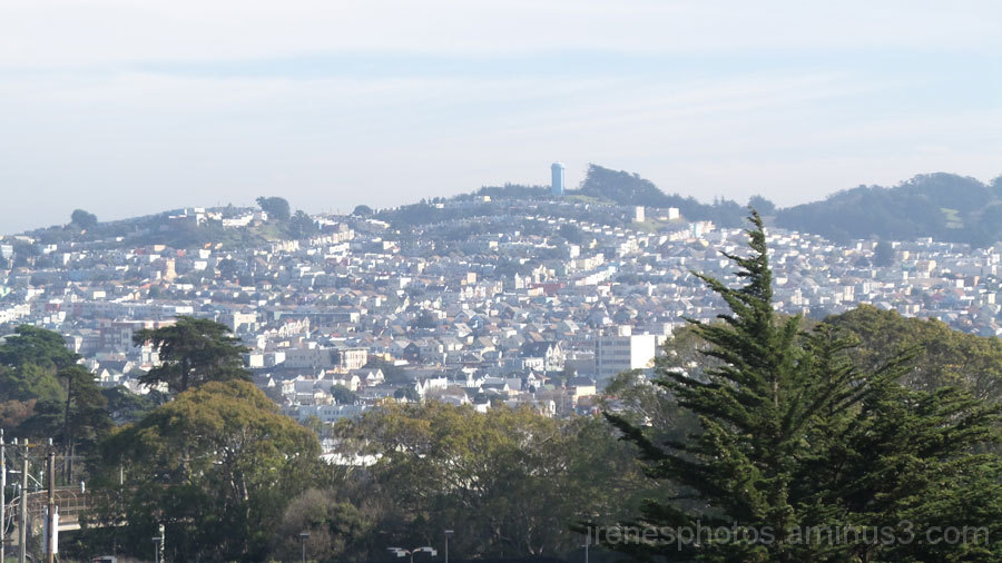 View From City College of San Francisco