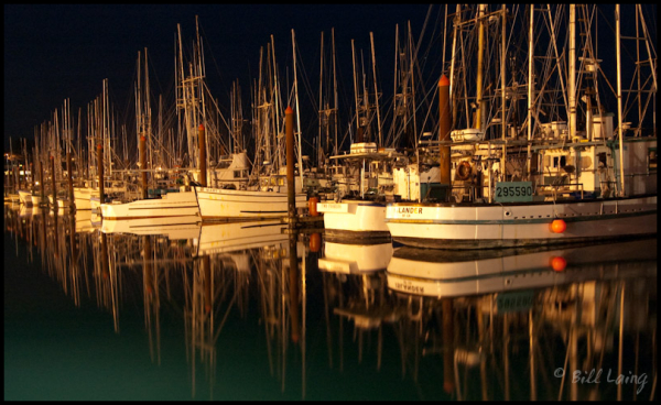 Newport Marina at Night