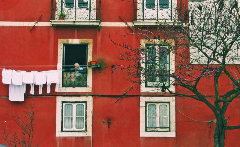 پنجره های بهار.. 1