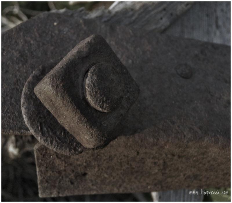 Un tornillo de Melocoton.