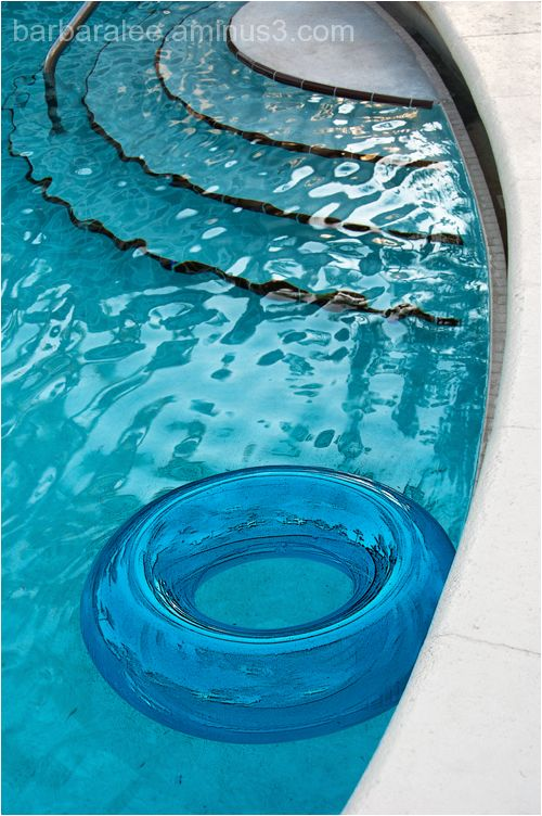 Swimming Pool and Lifesaver