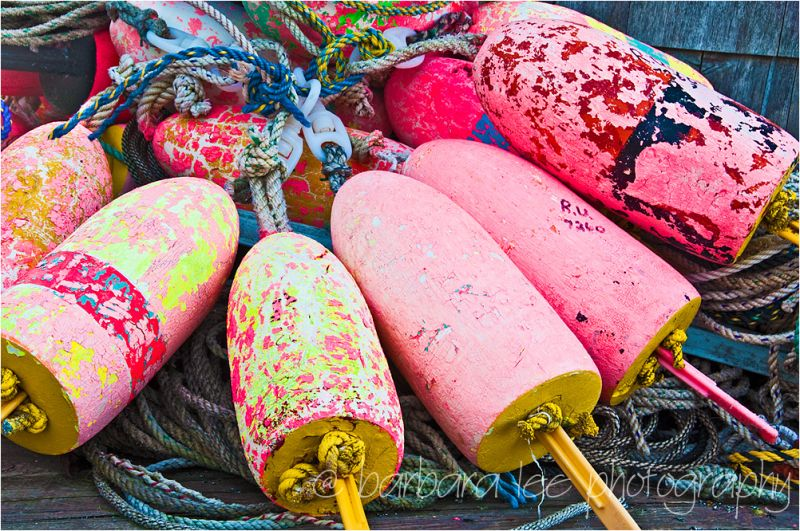 Pink Lobster Bouys