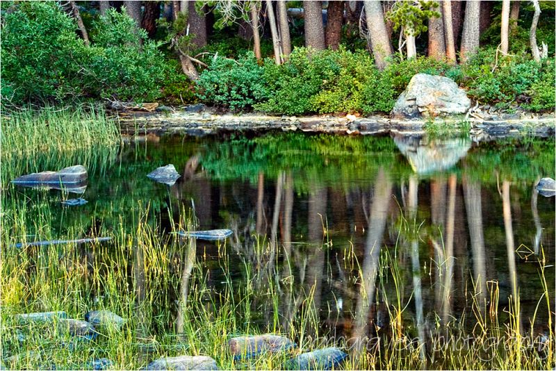 Reflections on Goose Lake, Plumas County, Californ
