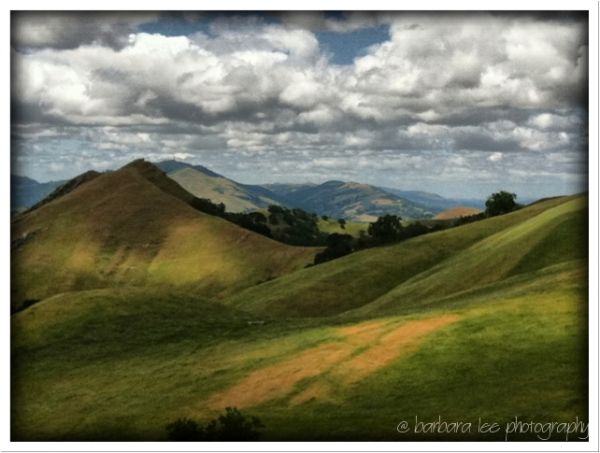 Sunol Regional Wilderness in the Springtime iPhone