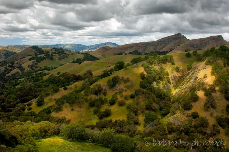 Sunol Regional Wilderness in the Spring