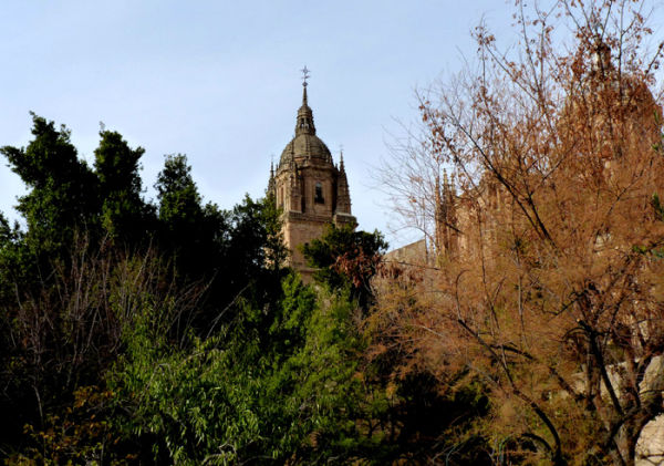 * La Catedral de Salamanca