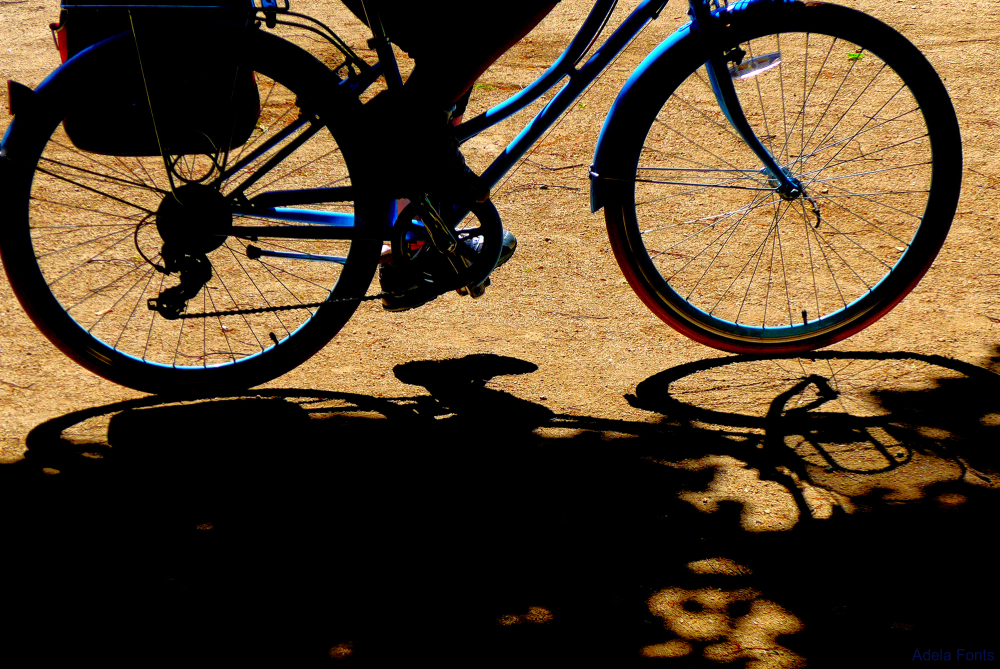 * Una bicicleta al parc