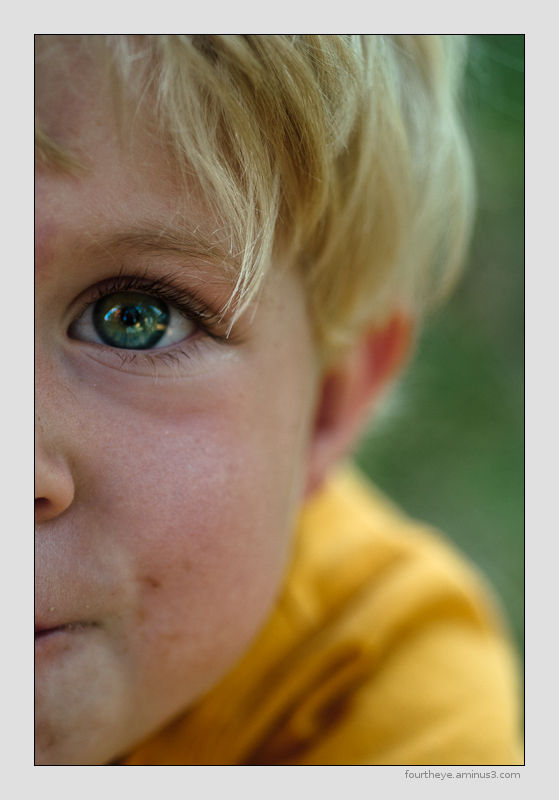 small boy portrait