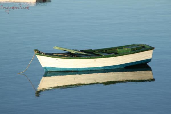 Beautiful boats