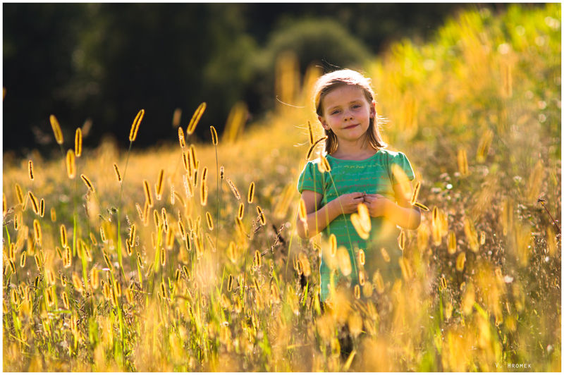 little girl walking through a field of wheat