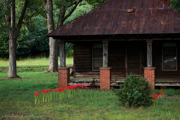 an abandoned house in rural north georgia