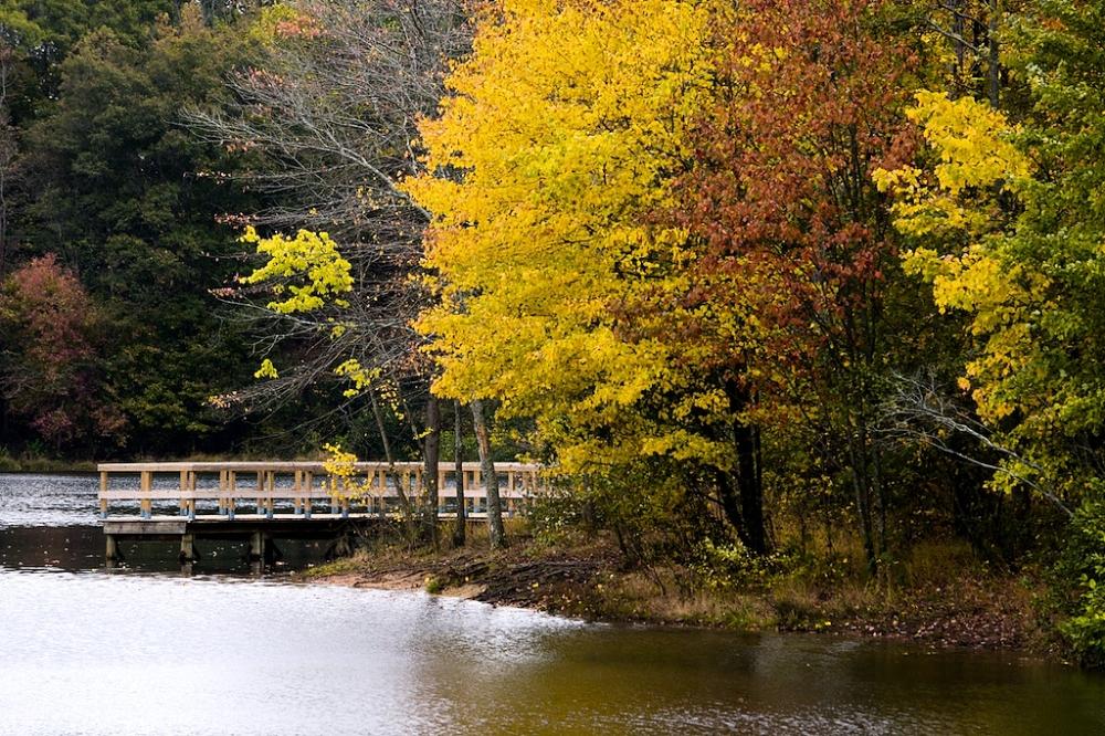 Oconee Forest Park and Herrick Lake