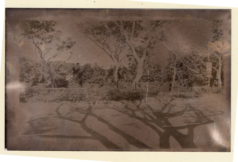 Photo darkroom printed using red wine.