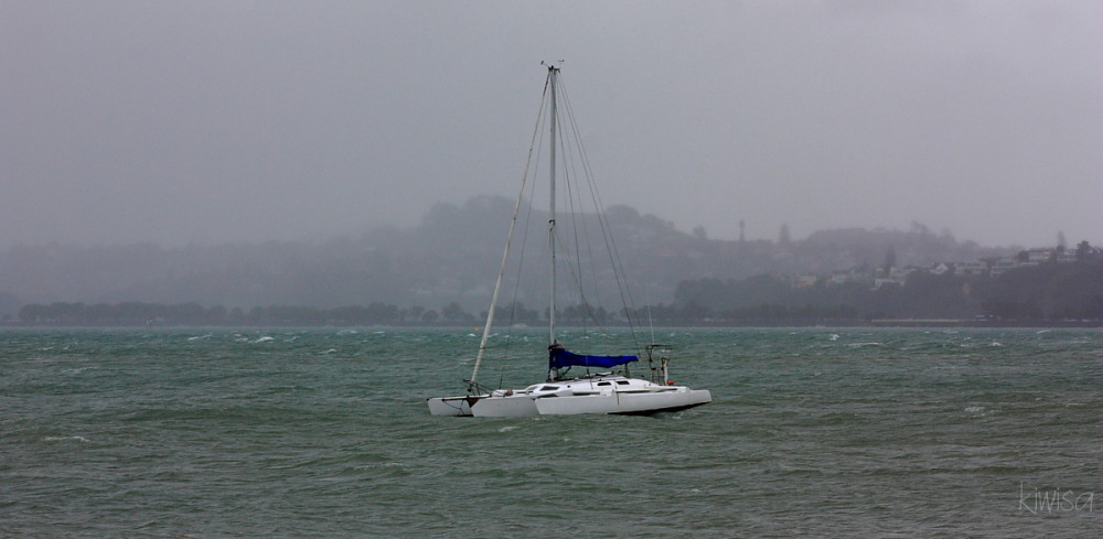 Misty morning on the Hauraki