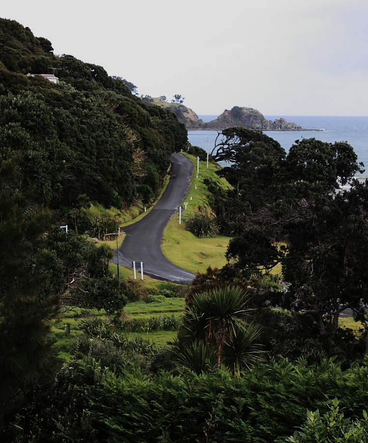 Great Barrier Island - coastal road